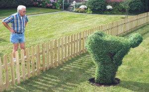 Buren zorgen soms voor verrassingen