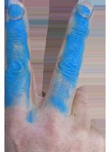 Victorie voor de blauwvingers